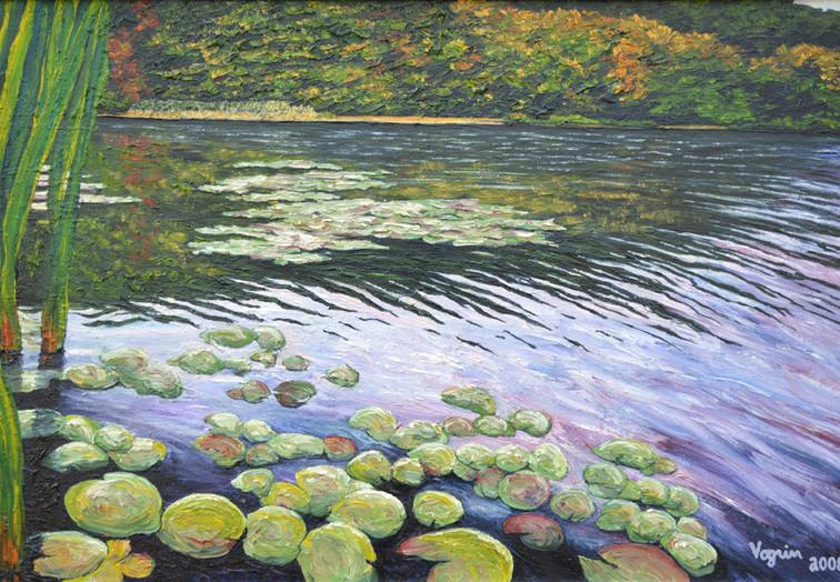 Lilly Pads on Lake Minsi