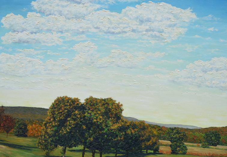Early Autumn Tree Line