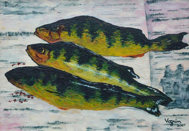 Fish Catch: Perch