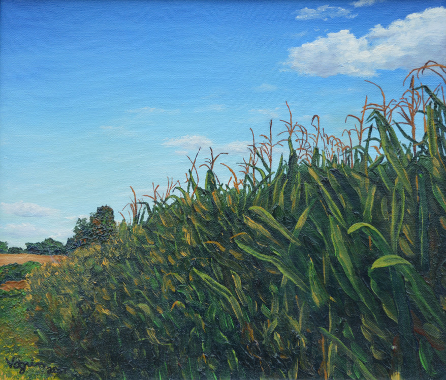 Edge of the Cornfield