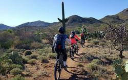Bikepacking-Adventure109