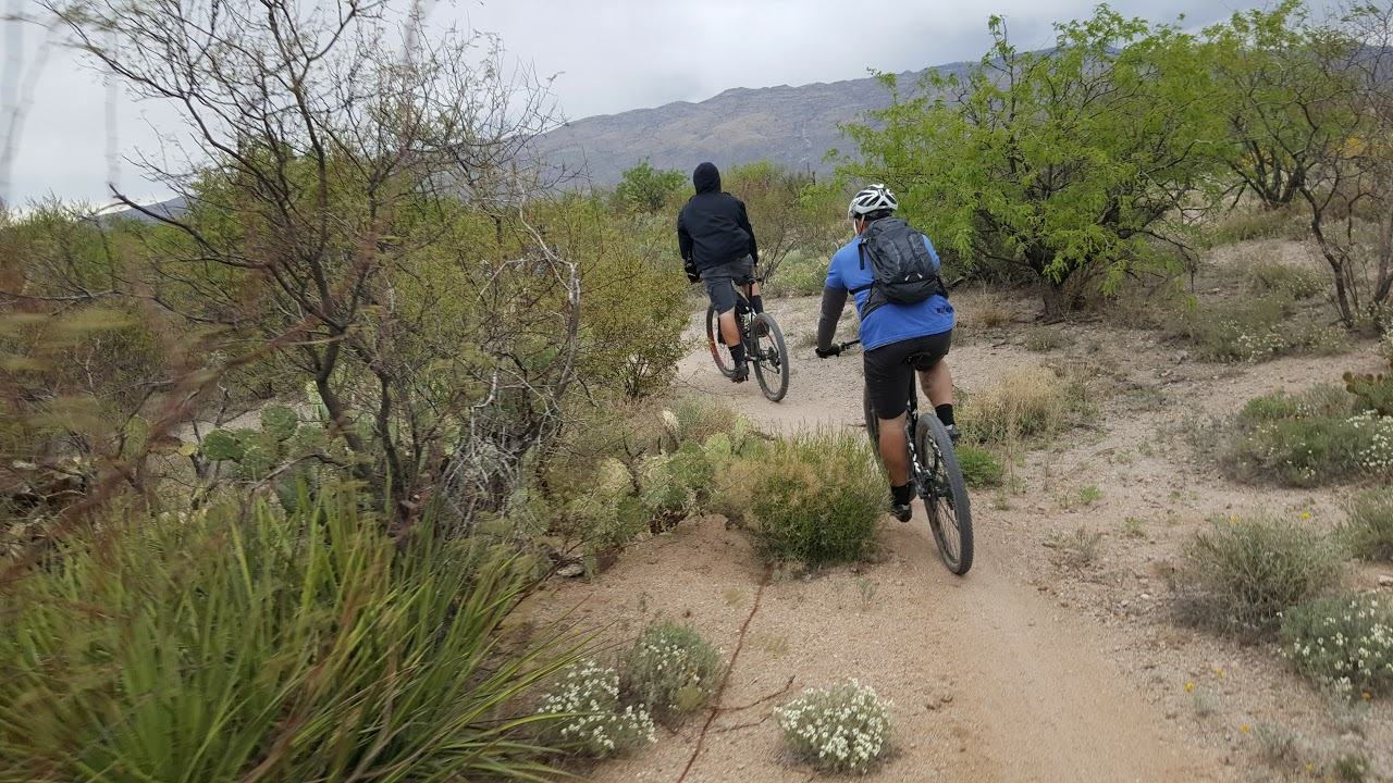 Bikepacking-Adventure50
