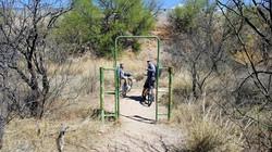Bikepacking-Adventure10
