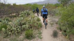 Bikepacking-Adventure51