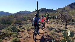 Bikepacking-Adventure98