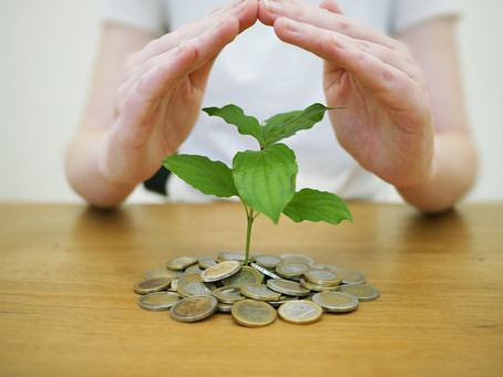 Wealth Preservation for Business Owners