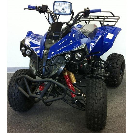 TPATV 09 110cc ATV