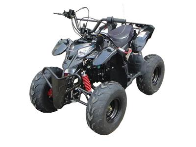 TPATV 507 110cc ATV Med