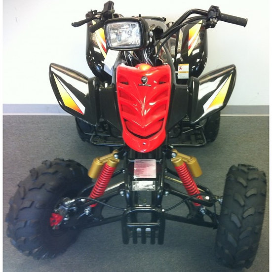 TPATV 01  110cc ATV w/Rev