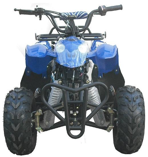 ATV 110-YL BLUE