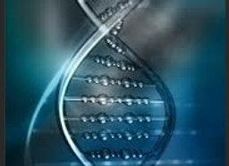 DNA Management