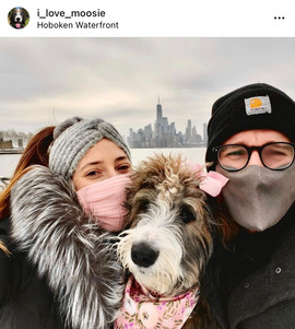 Bow Creek Brittany Doodles outdoors with a man and woman wearing face masks