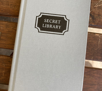 The Secret Library by Gina Marie Napolitan