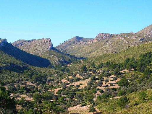 Trekking per la Serra de Llevant (22 i 23 de juny)