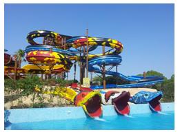 Sortida al parc aquàtic Aqualand!