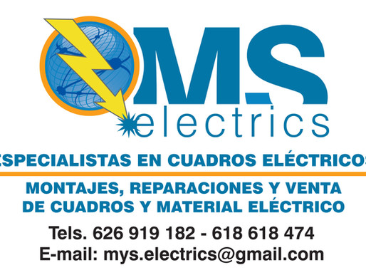 MS Electrics