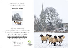 Sheep in Snow - for web.jpg