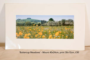 Buttercup Meadows.jpg