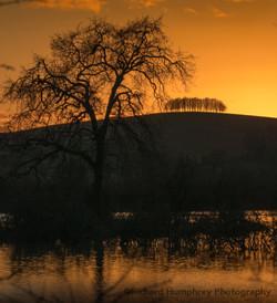 Barrow Hill sunset 23_01_21