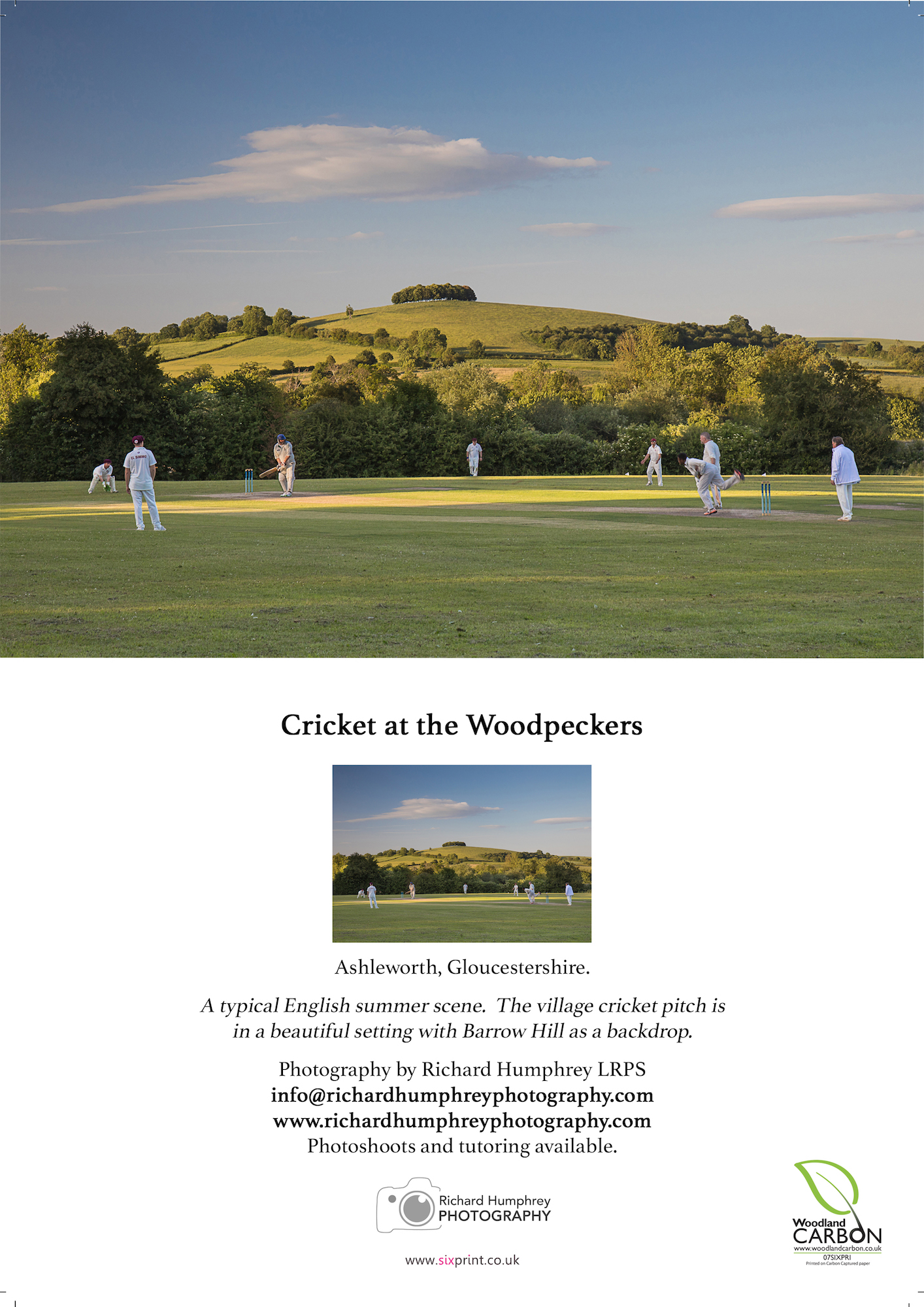 Cricket at the Woodpeckers