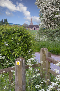 Ashleworth walk late spring