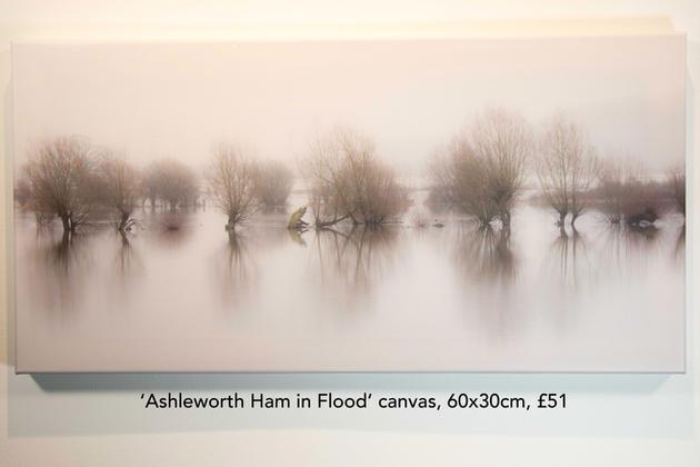 Ashleworth Ham in Flood canvas.jpg