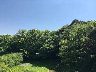 170429里山草刈_003.JPG
