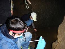 2021-2-18洞窟・里山観察-075Nikon.JPG