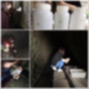 2019-08-31 安水質調査.jpg