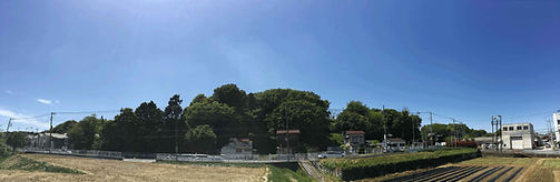 170505田谷山-039-春状況-Low.jpg