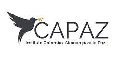 ICAPAZ_Logo_v3_dark.jpg