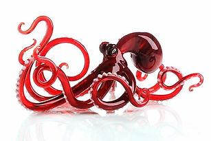 Octopus Red-Caldwell.JPG