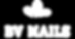 BV-Nails-Logo-white-transparent-compress
