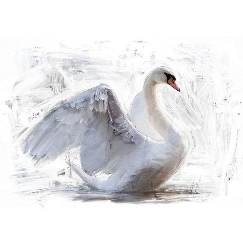 Mint Reversed White Swan