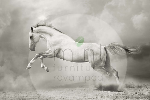 Mint White Horse Decoupage