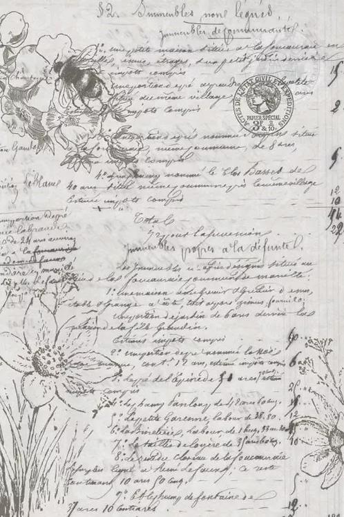 Roycycled Treasures Natural History Script