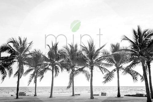 Mint Palm Trees Decoupage