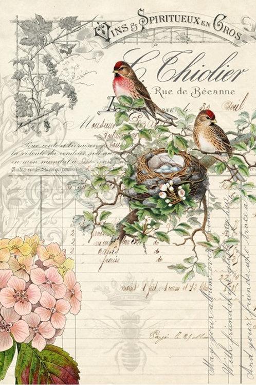 Roycycled Treasures Bird Ephemera