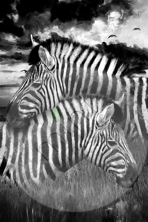 Mint Zebra Decoupage