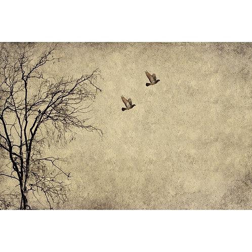 Mint Flying Birds Decoupage