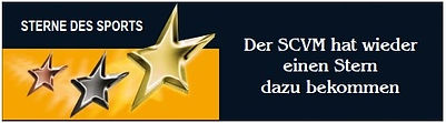 SternedesSports.jpg