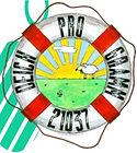 DP Logo Frühjahr.jpg