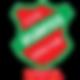 Atlântico Futsal