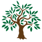 kissclipart-olive-tree-icon-clipart-oliv