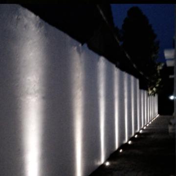 Laneway Evening