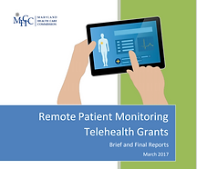 Telehealth Brief.PNG