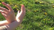 soph hands.jpg