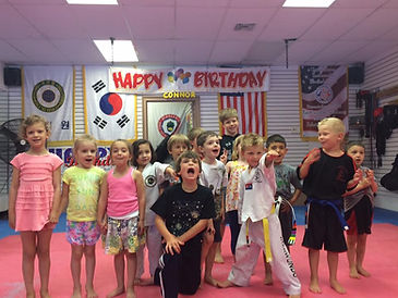 Taekwondo Birthday Party