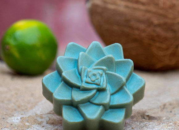 Aloe Vera, Butter and Agave Succulent Soaps