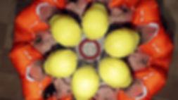 Zuber-JOY-10.jpg